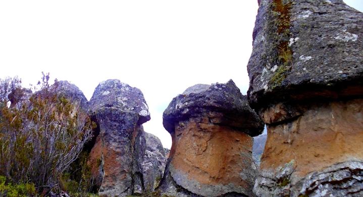 Bosque de PIedras de Huaraca