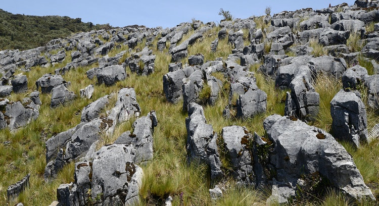 Paisajes selva alta peruana