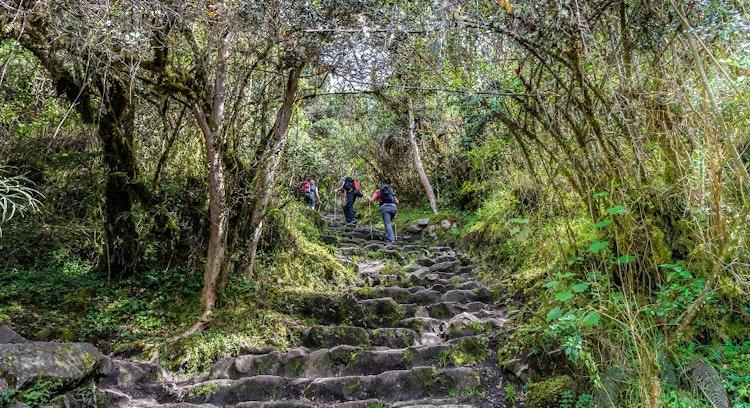 Escalera Camino del Inca
