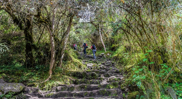 Inca Trail Stairs