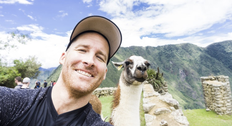 Llamas de Machu Picchu