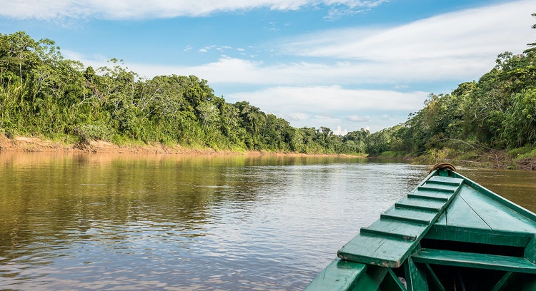 Manu National Park (3 days)