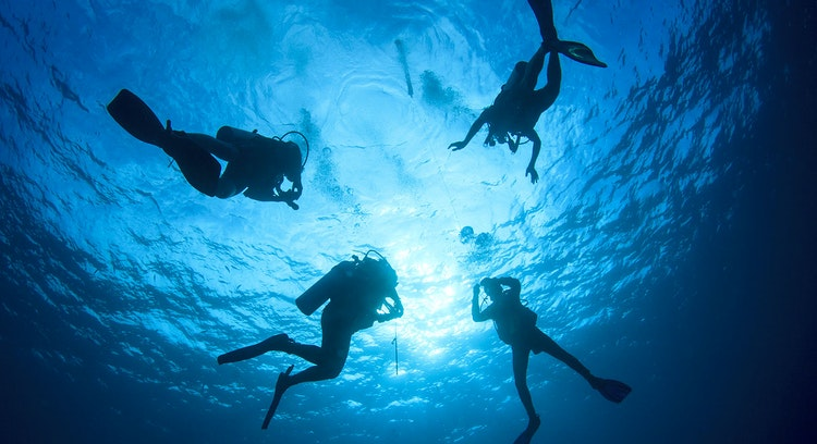Scuba diving in the Pacific Ocean