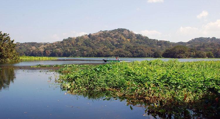 Ilha de Macacos e Lago Gatún