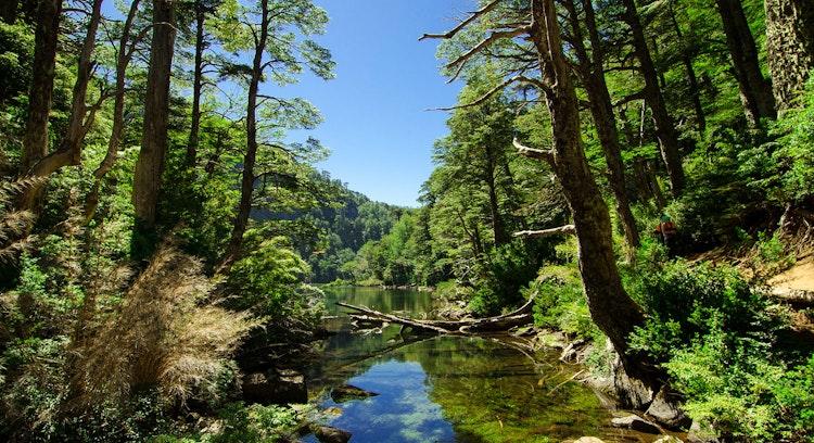 Huerquehue National Park trek