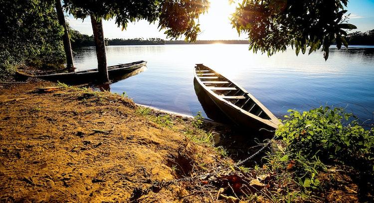 Collpa Chuncho de Guacamayos y Lago Sandoval (4 días) paseo