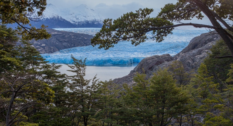 Glacir Grey en Torres