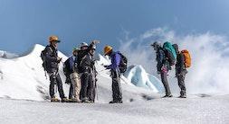 Grey Glacier Ice Hike