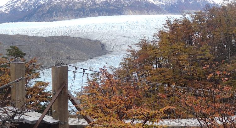 Puentes colgantes y Glaciar Grey