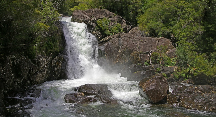 Cascada en parque nacional Alerce Andino