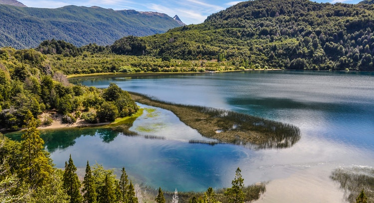 Parque Nacional sendero Alerce Andino