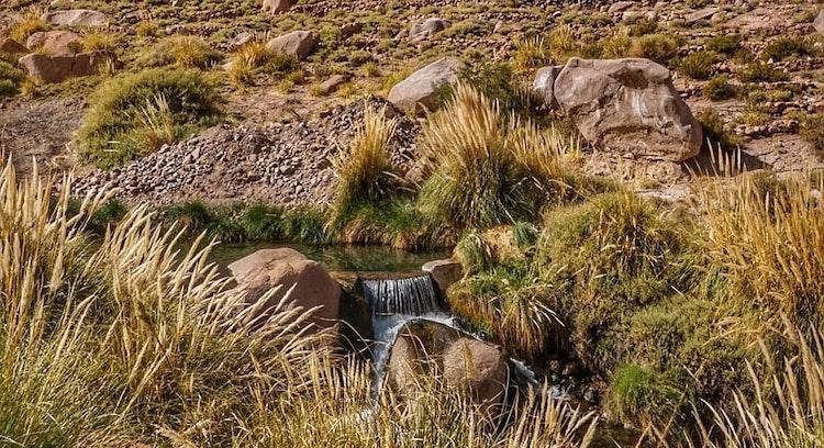 Termas en desierto de Atacama