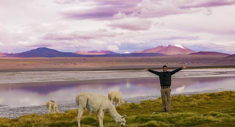 Hombre posando junto a llamas en la Laguna Colorada.