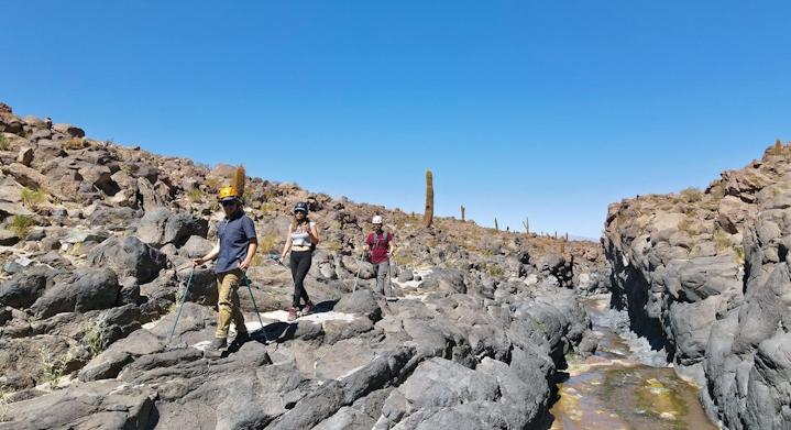 Trekking Valle Cactus