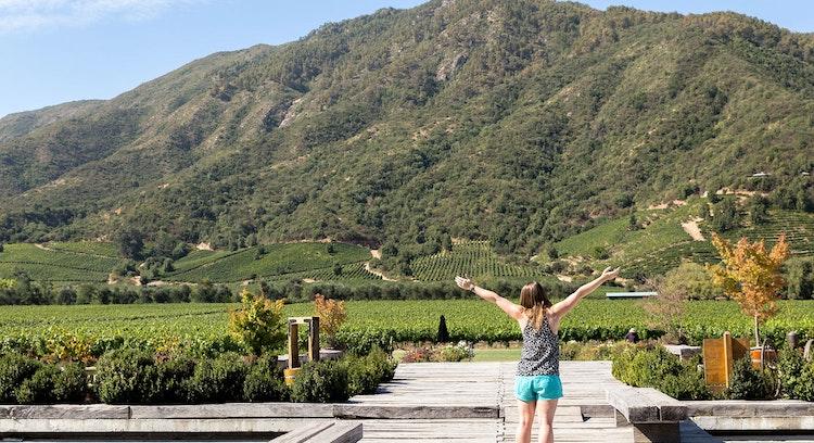 Wine Route: Colchaga & Santa Cruz