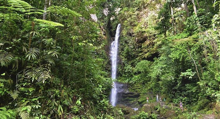 Cachoeira de Ahuashiyacu