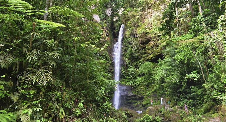 Catarata de Ahuashiyacu